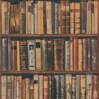 library multi by Andrew Martin library wallpaper