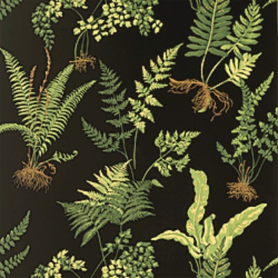 Thibaut Ferns black leafy wallpaper
