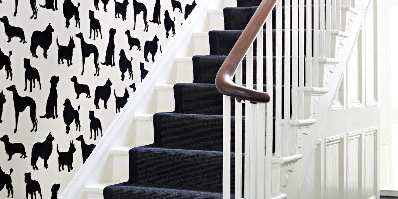 Osborne & Little Best In Show dog wallpaper