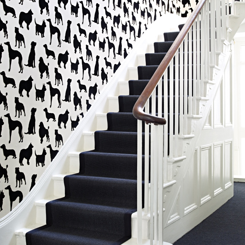 Osborne & Little Best In Show dog wallpaper