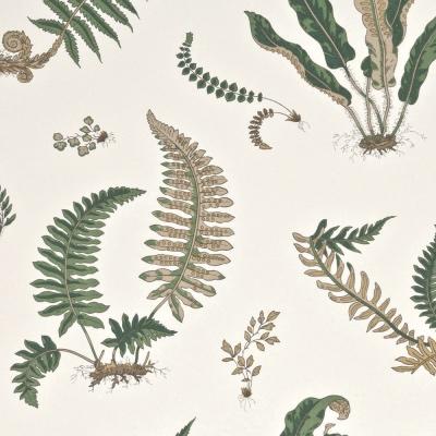GP and J Baker ferns leafy wallpaper