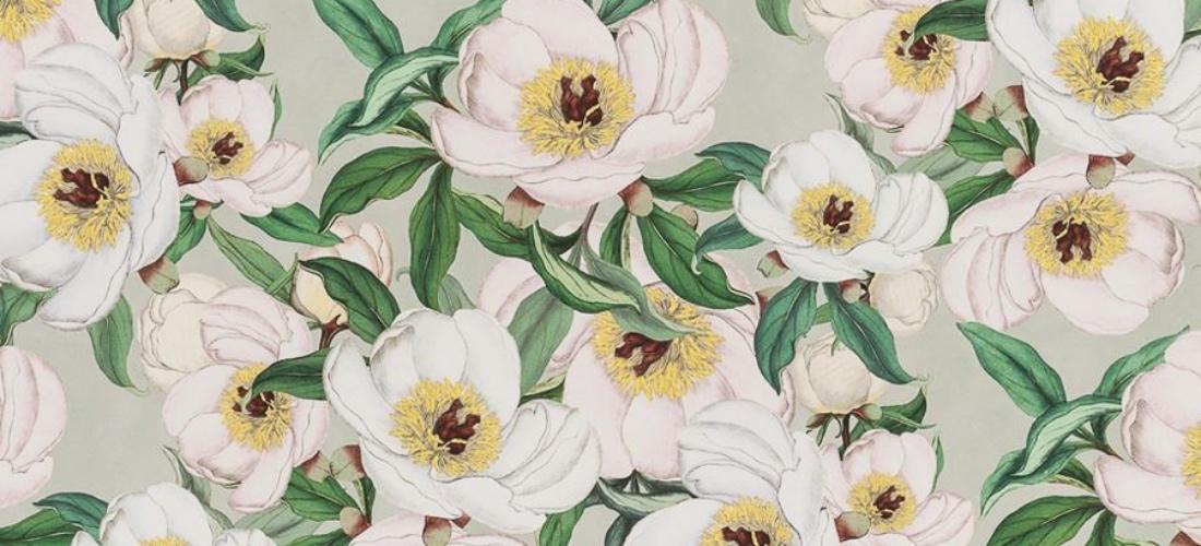 John Derian fabric for Designers Guild Paeonia Albiflora Celadon