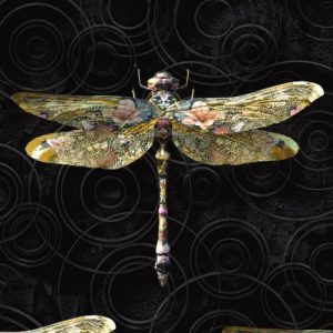 Anisoptera Botanicus Dragonfly black wallpaper